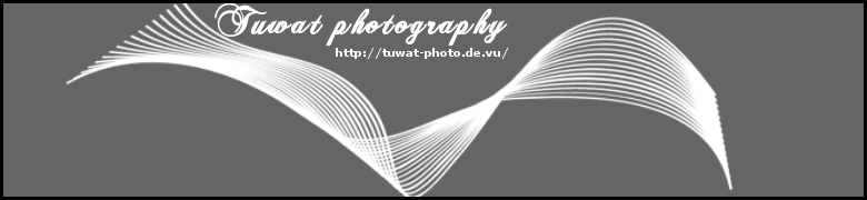 http://tuwat.blogsport.de/images/head_tuwat_photo_78x180px_neu_blackbackground_Black_rahmen.png